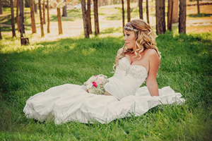 Wedding dress cleaning butlerz dry cleaning delivery for Professional wedding dress cleaning